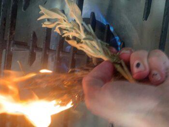 מתכון: חזה ברווז 5 אלמנטים - מדליקים עשבי תיבול